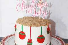 Christmas-in-July-Cake-2017