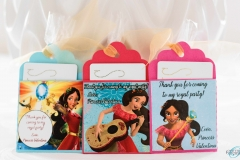 Elena of Avalor gift card holder